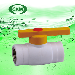 PPR Female Steel Ball Valve with Brass Thread XM4019
